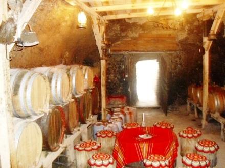 Το κρασί του υπέροχο από τοπικές ποικλίες